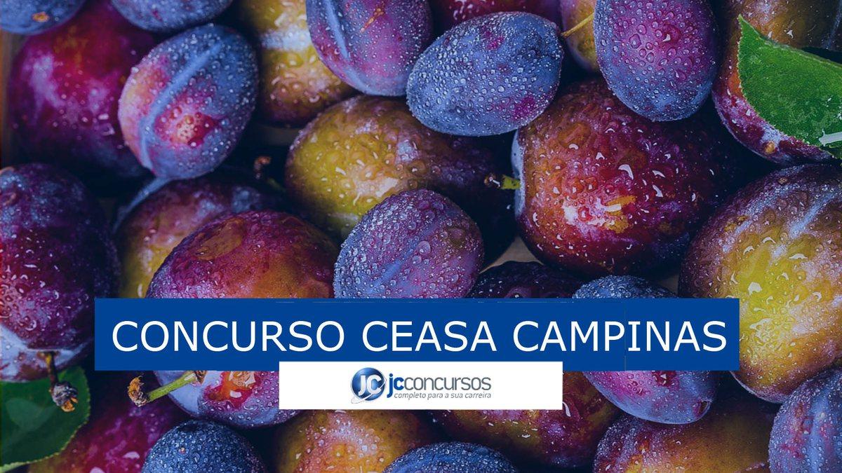 Concurso Ceasa Campinas