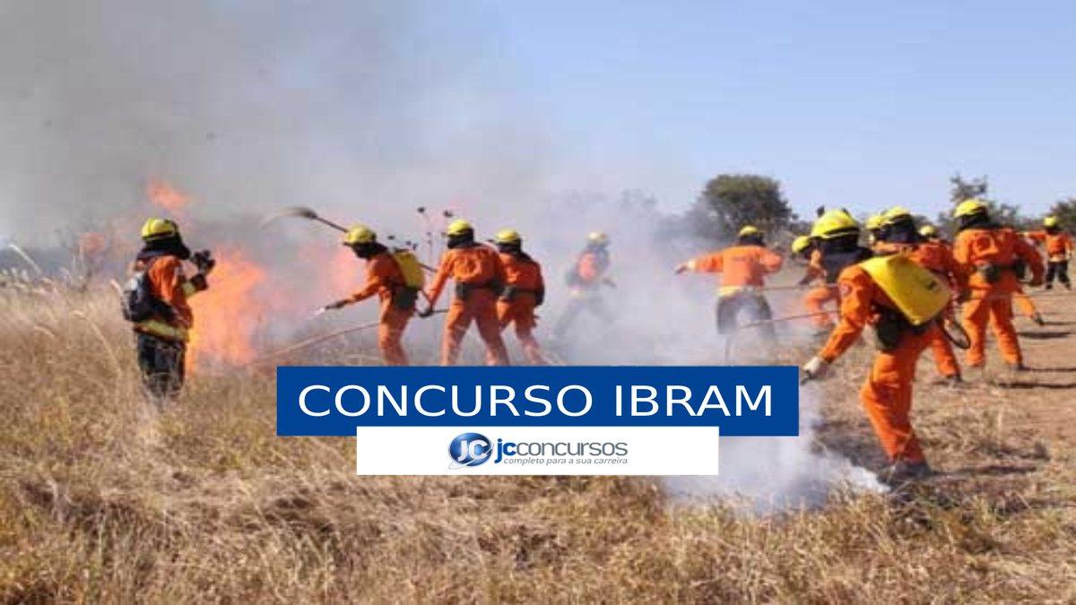 Concurso Ibram DF - brigadistas durante combate a incêndio em mata